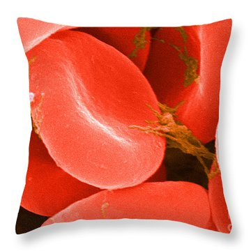 Red Blood Cells Sem Throw Pillow by Science Source