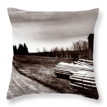 1900 Untitled Throw Pillow by Marcin and Dawid Witukiewicz