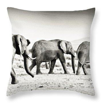 African Elephant In The Masai Mara Throw Pillow
