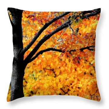 Blaze Throw Pillow by Optical Playground By MP Ray