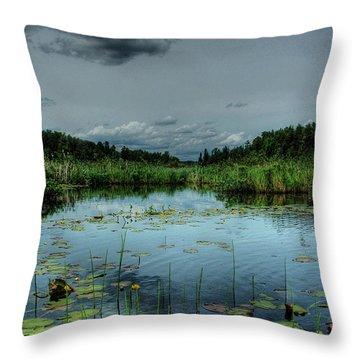 Bottomless Lake Throw Pillow by Heather  Rivet