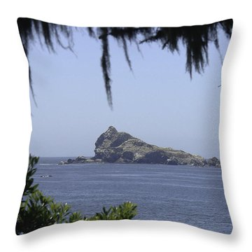 Throw Pillow featuring the photograph Castle Rock by Betty Depee