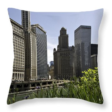 Throw Pillow featuring the photograph Chicago Architecture by Paul Plaine