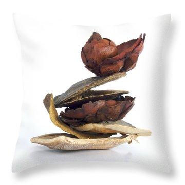 Dried Pieces Of Vegetables.  Throw Pillow by Bernard Jaubert
