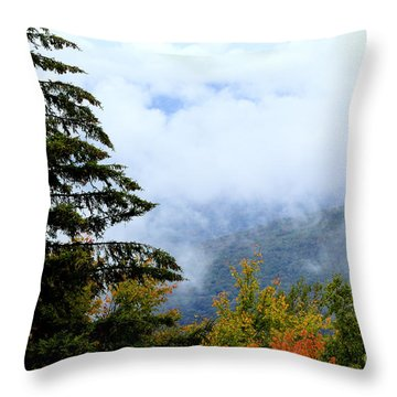 First Day Of Fall Throw Pillow by Thomas R Fletcher