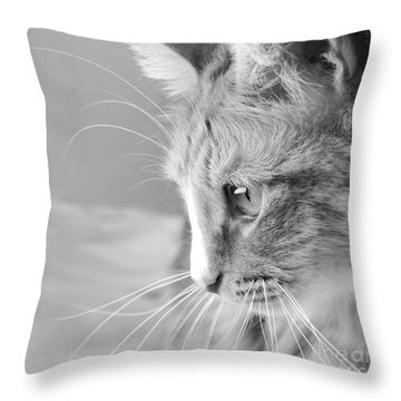 Flitwick The Cat Throw Pillow by Jeannette Hunt
