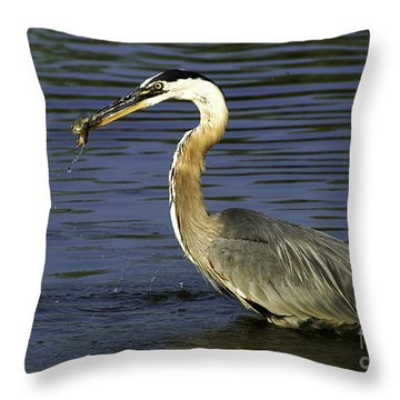 Throw Pillow featuring the photograph 2 For 1 Dinner Special by Clayton Bruster