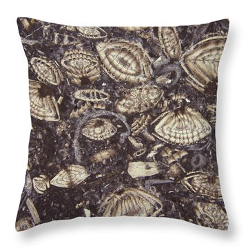 Foraminiferous Limestone Lm Throw Pillow by M. I. Walker