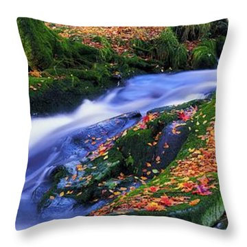 Glenmacnass Waterfall, Co Wicklow Throw Pillow by The Irish Image Collection
