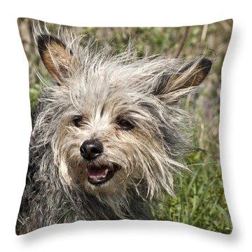 Gremlin  Throw Pillow