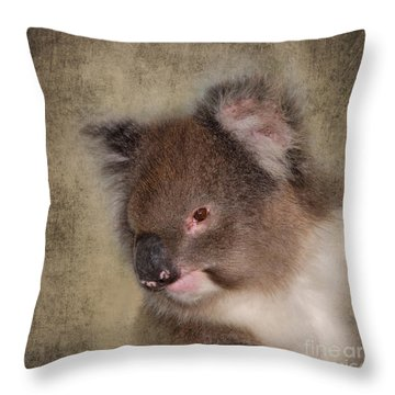 Koala Throw Pillow by Louise Heusinkveld