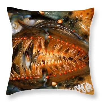 Lobster Mouth Throw Pillow by Ted Kinsman