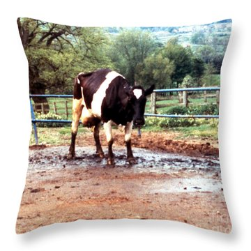 Mad Cow Disease Throw Pillow by Science Source