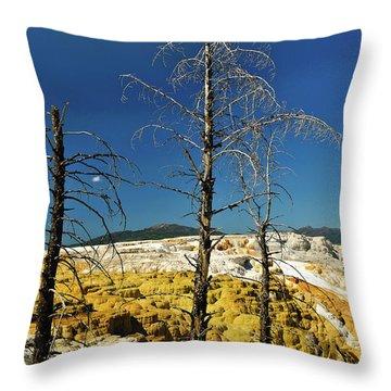 Mammoth Upper Terrace Throw Pillow by Greg Norrell