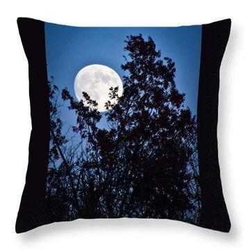 Moon Night Throw Pillow by Jiayin Ma