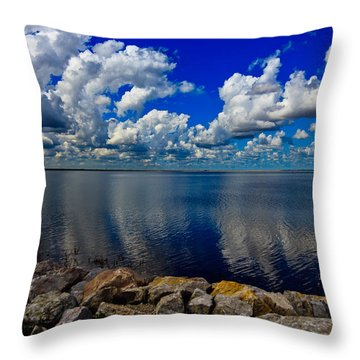 Mother Natures Beauty Throw Pillow by Doug Long