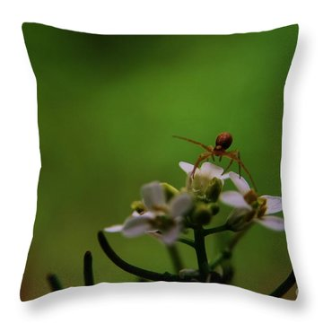 Mountains To Climb  Throw Pillow by Neal Eslinger