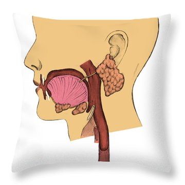 Mouth And Throat Throw Pillow