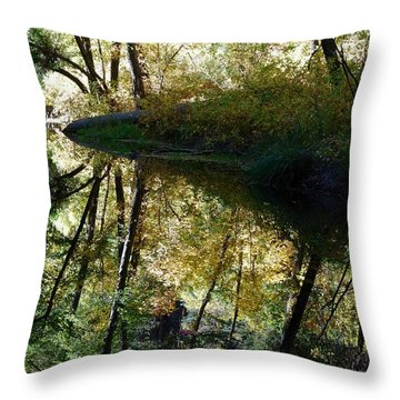 Throw Pillow featuring the photograph Oak Creek Reflection by Tam Ryan
