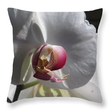 Orchid Macro Throw Pillow by Alfred Ng