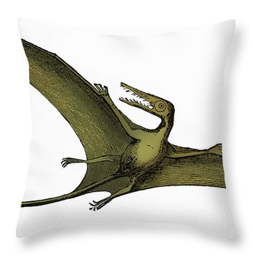 Pterodactyl Extinct Flying Reptile Throw Pillow by Science Source