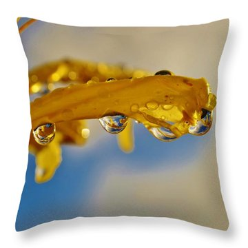 Throw Pillow featuring the photograph Raindrops On Blossom by Werner Lehmann