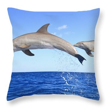 Roatan, Bay Islands, Honduras Throw Pillow by Stuart Westmorland