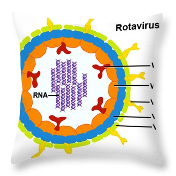 Rotavirus Throw Pillow by Science Source