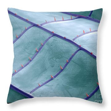 Sem Of Dragonfly Wing Throw Pillow by Ted Kinsman