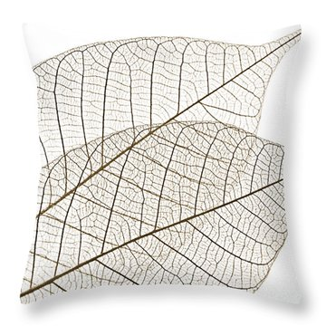 Skeleton Leaves Throw Pillow by Elena Elisseeva