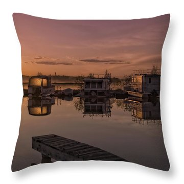Summer Solstice Throw Pillow by Heather  Rivet