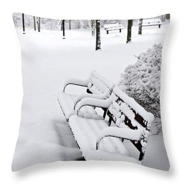 Winter Park Throw Pillow by Elena Elisseeva