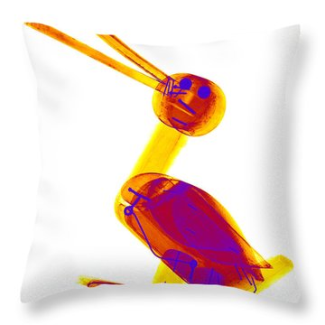 X-ray Of A Wooden Duck Toy Throw Pillow by Ted Kinsman