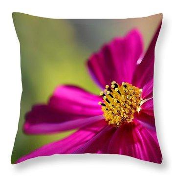 Throw Pillow featuring the photograph Yellow Dots by Henrik Lehnerer