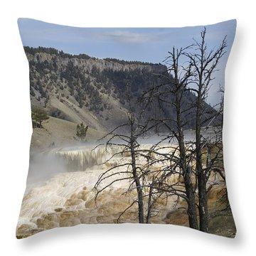 Yellowstone Nat'l Park Throw Pillow by Henri Irizarri