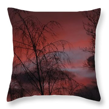 2011 Sunset 1 Throw Pillow