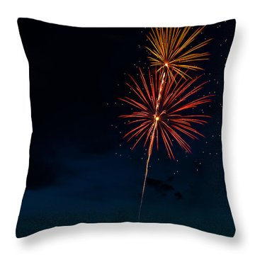 20120706-dsc06445 Throw Pillow by Christopher Holmes