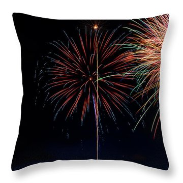 20120706-dsc06461 Throw Pillow by Christopher Holmes