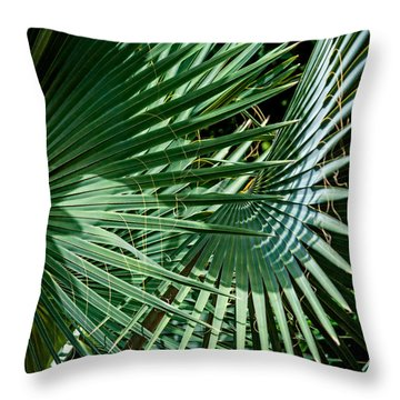 20120915-dsc09902 Throw Pillow by Christopher Holmes