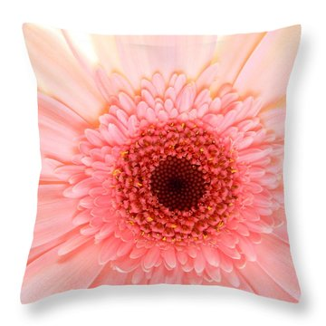 2149 Throw Pillow by Kimberlie Gerner