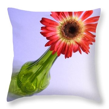 2200c2-002 Throw Pillow by Kimberlie Gerner