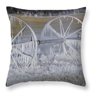 23 Degrees Throw Pillow by Fran Riley