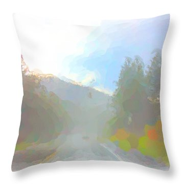 Untitled Throw Pillow by Adam Vance