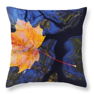Autumn Leaf On The Water Throw Pillow by Michal Boubin