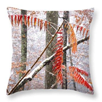 Autumn Snow Monongahela National Forest Throw Pillow by Thomas R Fletcher