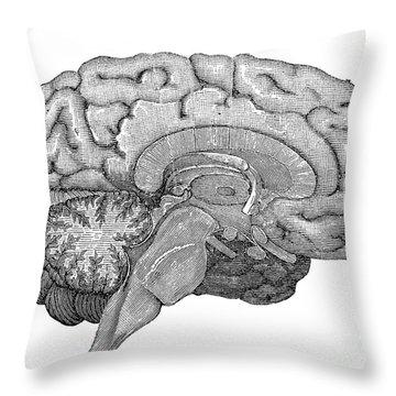 Brain Cross-section Throw Pillow