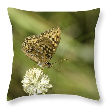 Throw Pillow featuring the photograph Butterfly by Betty Depee