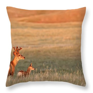 Digitally Enhanced Image With Painterly Throw Pillow by Robert Postma