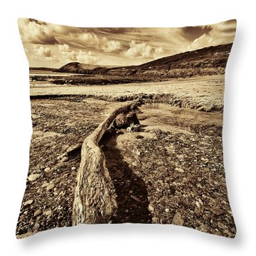 Throw Pillow featuring the photograph Driftwood by Steve Purnell