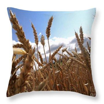 Field Of Wheat Throw Pillow by Bernard Jaubert